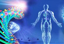 Биорезонансная терапия