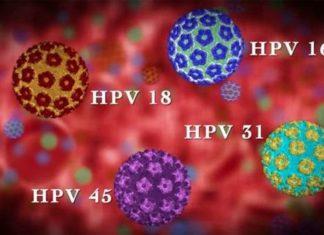 virus-papilomy-cheloveka
